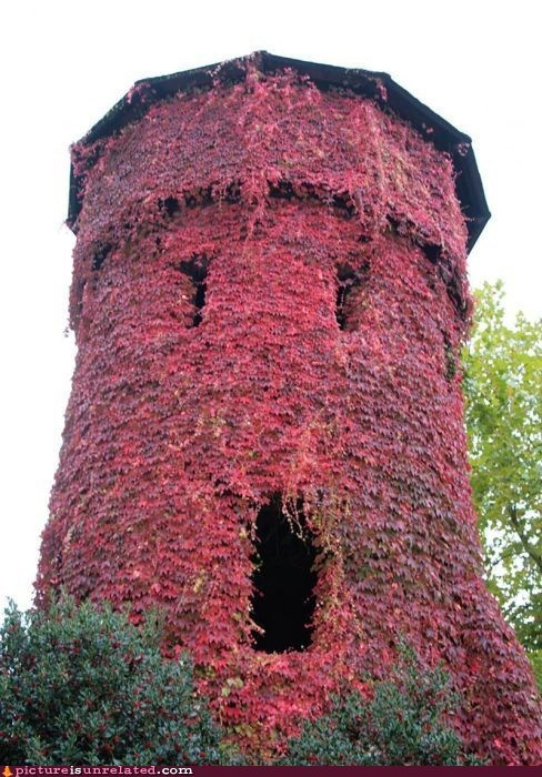castle no tower wtf - 5913503232
