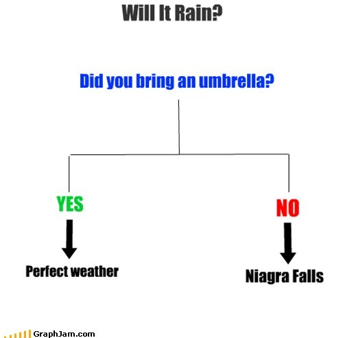 flow chart,niagara falls,rain,umbrella,weatherman