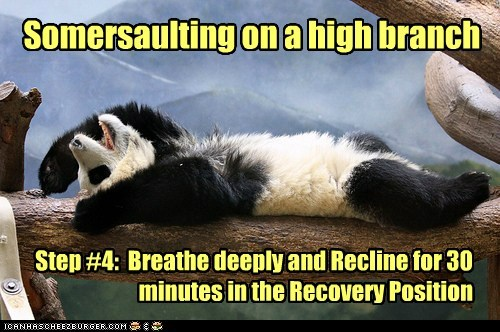 Somersaulting on a high branch Step #4: Breathe deeply and Recline for 30 minutes in the Recovery Position