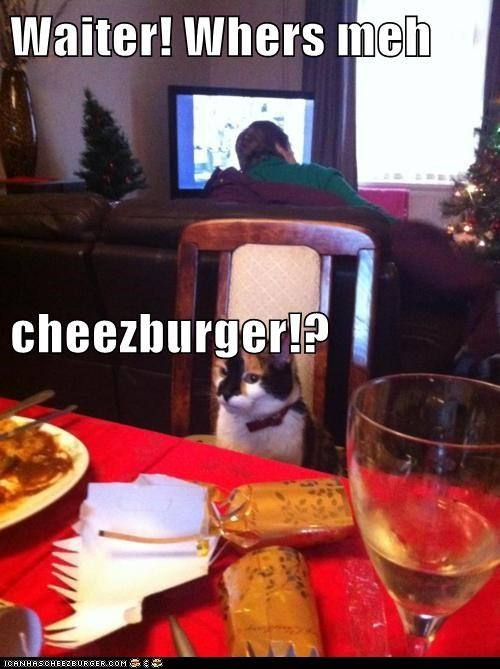 Cheezburger Image 5915019520