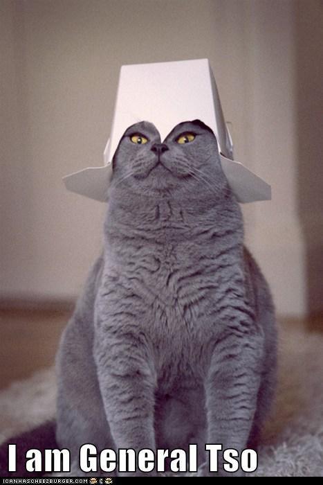 box chicken general general tso hat i am pun takeout tso - 5915128064