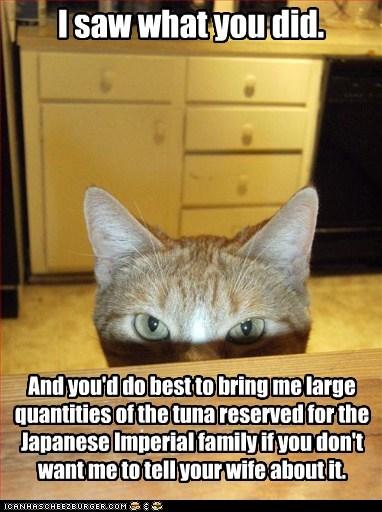 blackmail bribery crime demands human saw tuna witness - 5915601152
