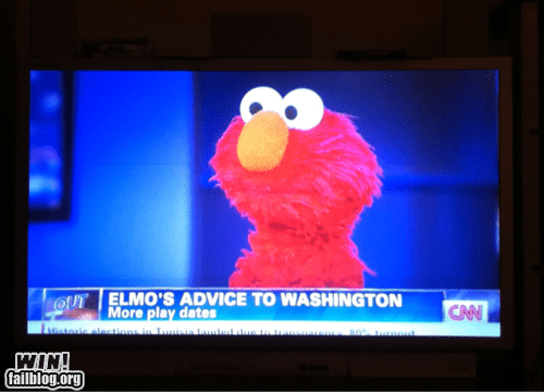 elmo politics pro tip PROTIP Sesame Street true facts - 5917225984