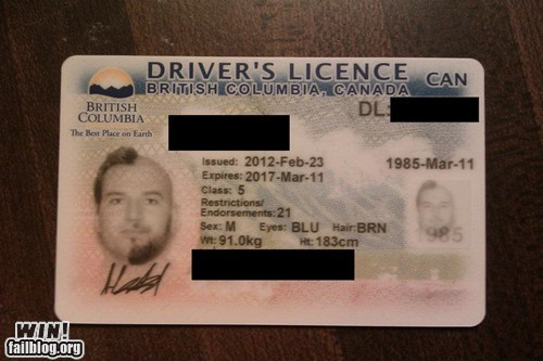beard drivers license facial hair id novelty - 5917466368