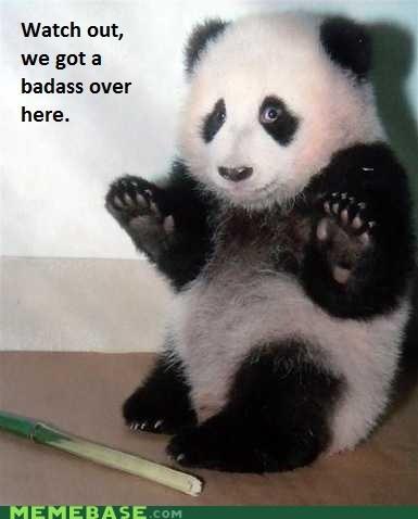 Badass bamboo cute panda