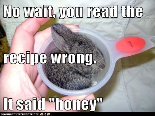 bunnies,bunny,cooking,honey,measuring cups,mistakes,recipe,sounds like