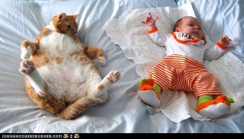 Babies cyoot kitteh of teh day hoomins kids mimic mimicking on back tummies