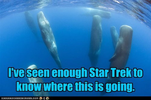 beam me up,floating,Star Trek,water,whales