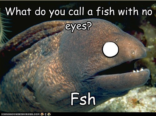 Bad Joke Eel eyes fish no puns - 5919268096