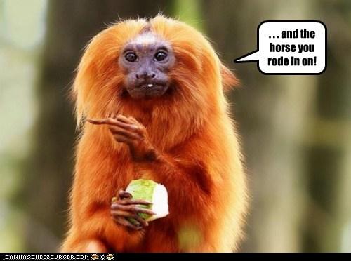 insults mean middle finger monkeys rude - 5919772928