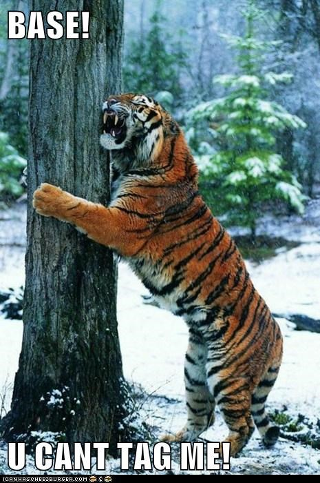 game,grab,hug,play,run,tag,tiger,tree