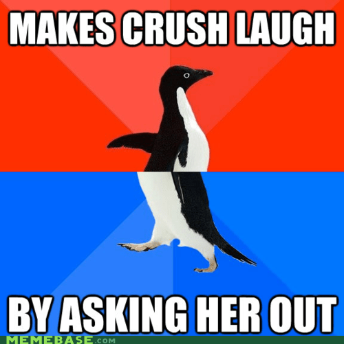 awesome Awkward categories crush dating meme madness overload socially awkward penguin - 5921568000