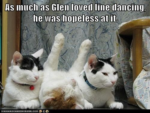 best of the week,Cats,dance,dancing,FAIL,Hall of Fame,hopeless,line,line dancing,loved