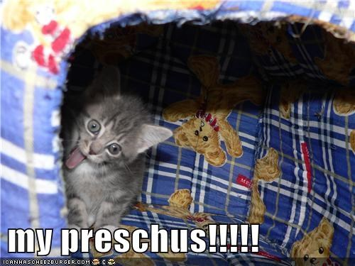 cat derp gollum kitty Lord of the Rings - 5921877248