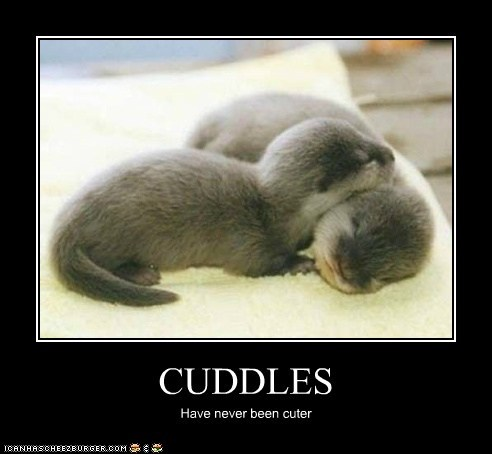 CUDDLES Have never been cuter