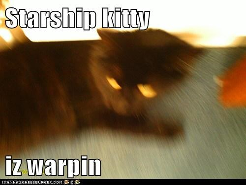 Starship kitty   iz warpin