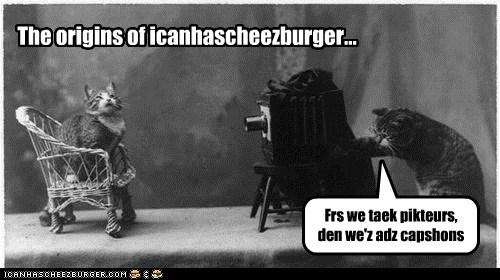 Cheezburger Image 5924864768