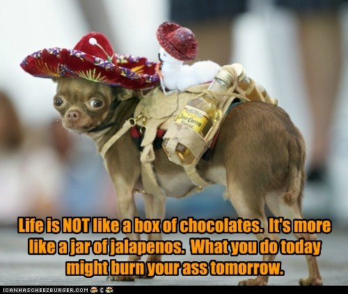 Life is NOT like a box of chocolates. It's more like a jar of jalapenos. What you do today might burn your ass tomorrow.