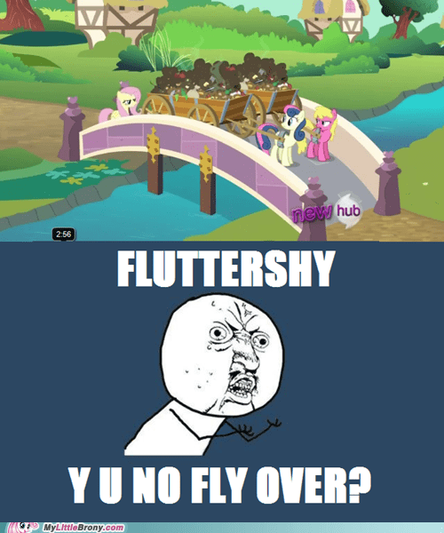 fluttershy flying meme Y U No Guy - 5926707968