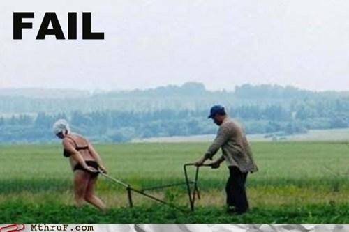 field oxen plow woman work - 5927026688