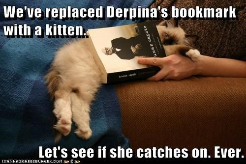 We've replaced Derpina's bookmark with a kitten. Let's see if she catches on. Ever.