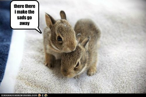 baby cute rabbits small squee sweet - 5928111616