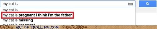 auto complete,cat,google,pregnant