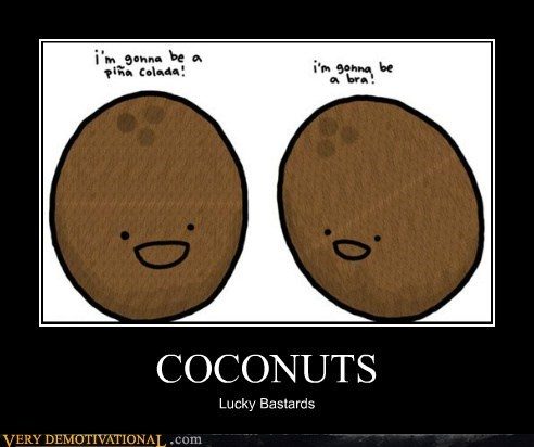 booze bra coconuts hilarious lucky - 5928940032