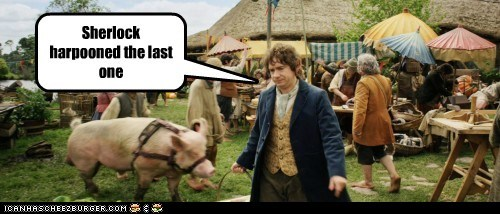Bilbo Baggins,harpoon,Martin Freeman,pig,Sherlock,The Hobbit