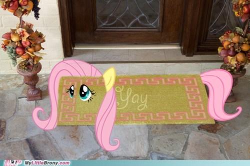 doormat,fluttershy,meme,yay