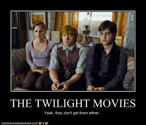 THE TWILIGHT MOVIES Yeah, they don't get them either...