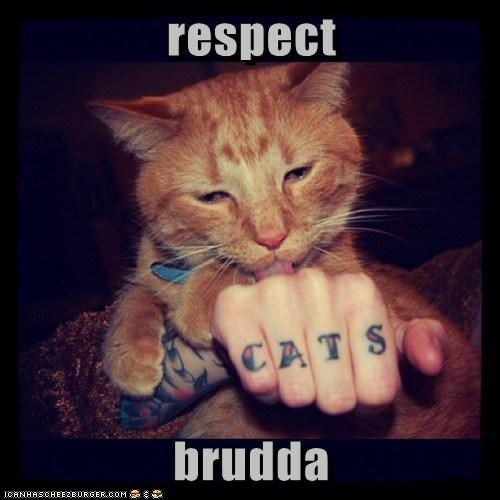 brother hand licking respect tabby tattoo - 5930223104