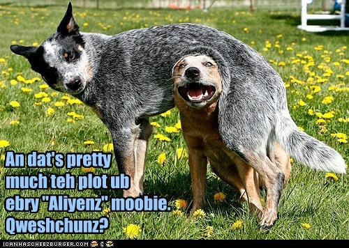 Aliens best of the week birth blue heeler goggies Hall of Fame movies reenactment two dogs - 5930445056