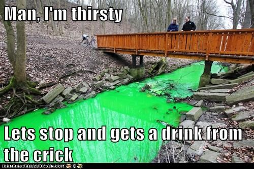 Man, I'm thirsty Lets stop and gets a drink from the crick