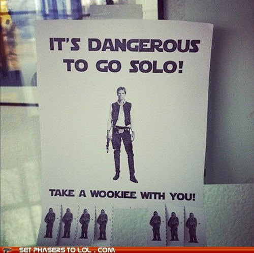 best of the week,chewbacca,Han Solo,Harrison Ford,its dangerous to go alone,solo,star wars,wookie