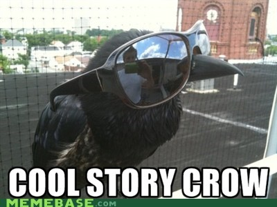 caw come at me crow glasses - 5934536192