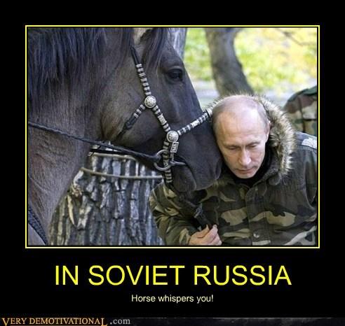 hilarious horse whisperer Putin Soviet Russia - 5934708992