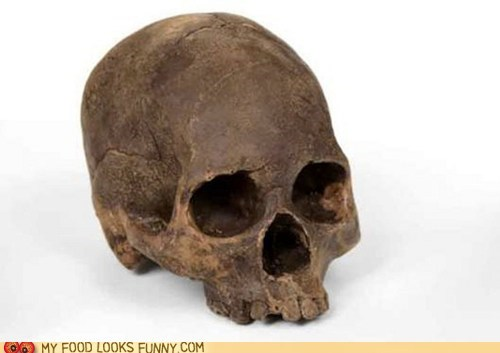 bone cast chocolate replica skull - 5934744064