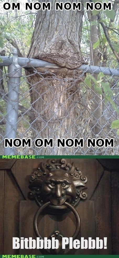 hungry knocker Memes nom nom tree - 5934796800