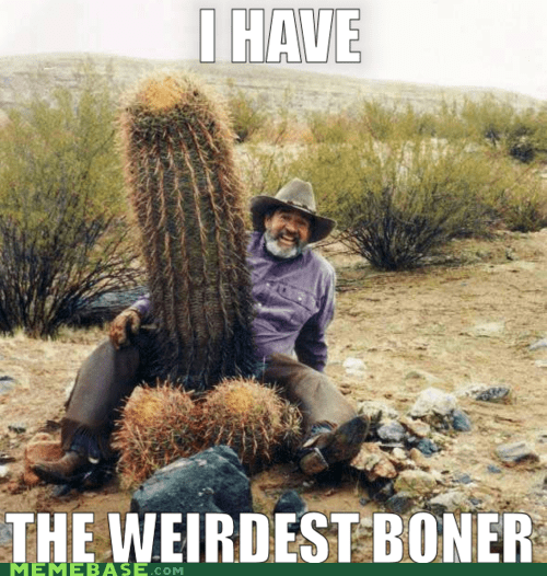 broner,cactus,Memes,prickly,weird