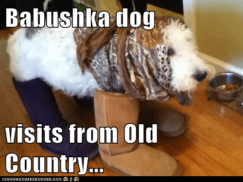 babushka boots dogs dressed up old country russia what breed