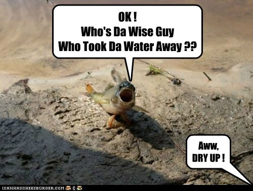 OK ! Who's Da Wise Guy Who Took Da Water Away ?? Aww, DRY UP !