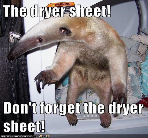 The dryer sheet! Don't forget the dryer sheet!
