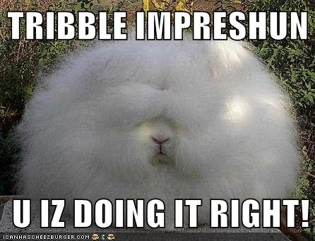 bunnies,bunny,doing it right,impressions,rabbits,Star Trek,tribbles