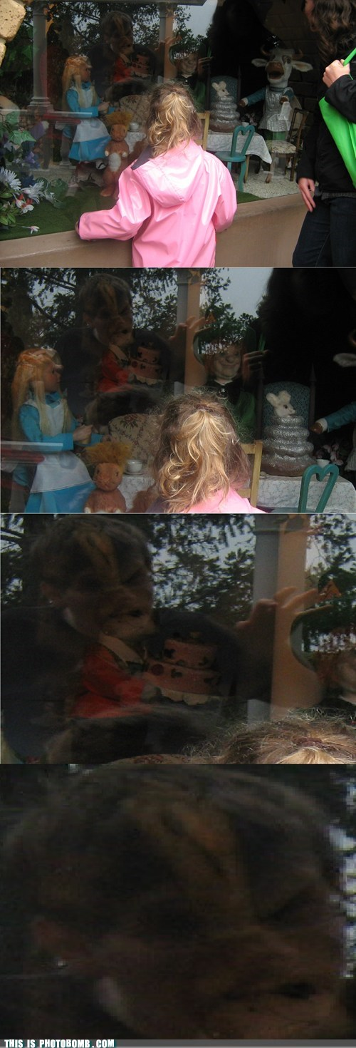 alice in wonderland Impending Doom rabbit hole window shopping - 5937627392