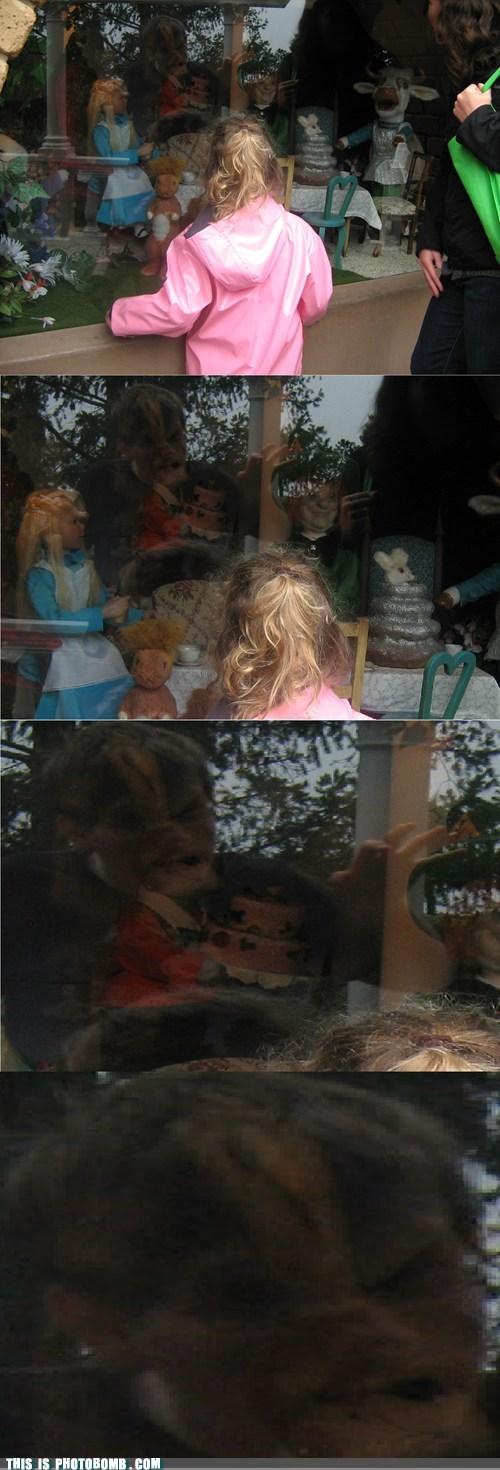 alice in wonderland Impending Doom rabbit hole window shopping - 5937627392