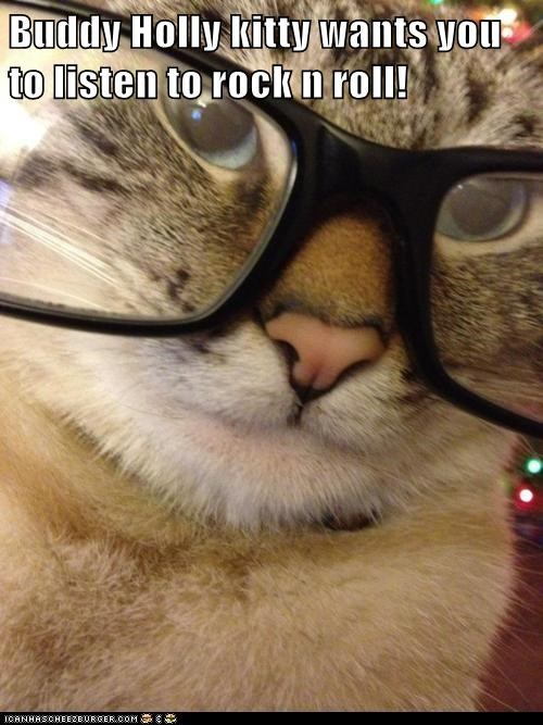 Buddy Holly kitty wants you to listen to rock n roll!
