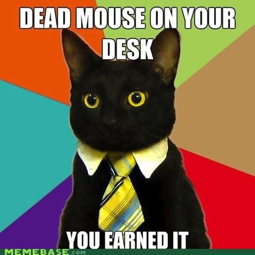 Business Cat dead desk meme madness mouse - 5938639616