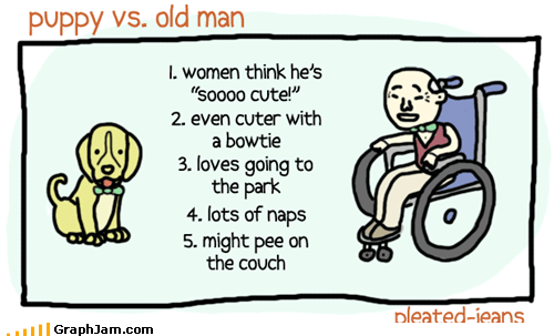 cute,old men,puppies