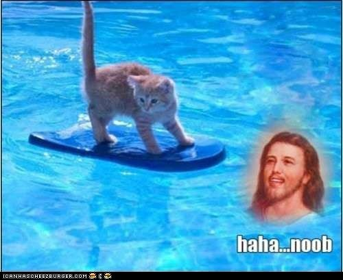 caption,Cats,floating,jesus,loljesus,n00bs,noob,pools,walking on water,water
